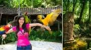Copán Ruinas y Macaw Mountain
