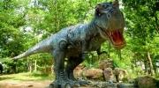 FULL DAY Dino Park y Xejuyup
