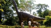 FULL DAY Dino Park y Xetulul