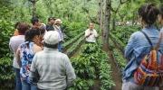 Full Day Antigua Guatemala Aventura, Naturaleza y Aromas