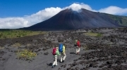 Full Day Ascenso al Volcán Pacaya