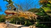 Full Day Dino Park + Xocomil