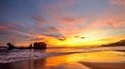 Surf City, El Boquerón y Atardecer Playa El Tunco